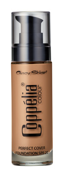 Perfect Cover Foundation – Honey