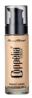 Perfect Cover Foundation – Ivory